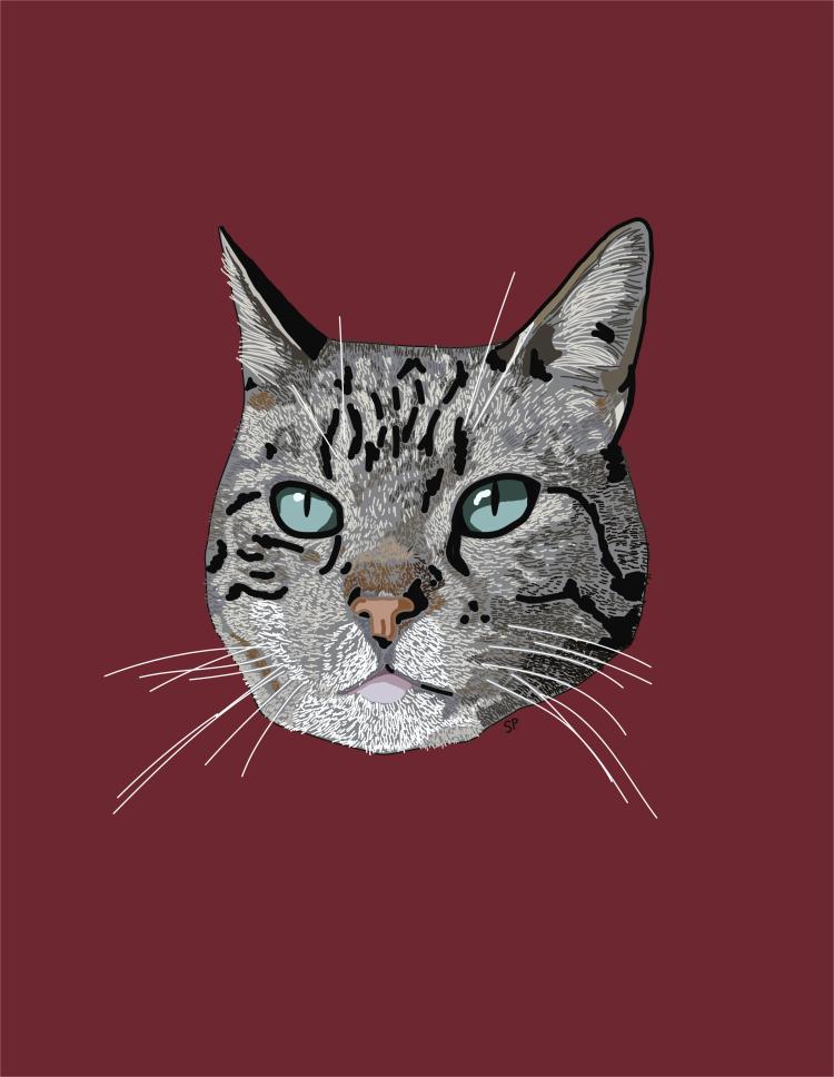 Illustration of a grey tabby cat